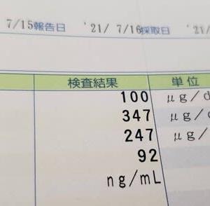 鉄の値が28(正常値40~188)、心臓バクバク、その後