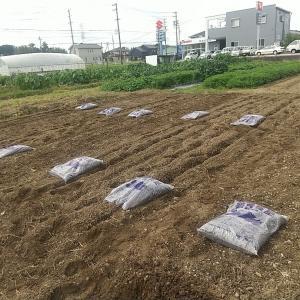 第3畑、耕運機、鶏糞堆肥