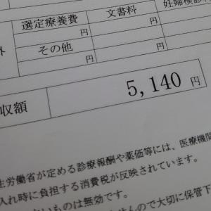 【36週】夜中の激痛