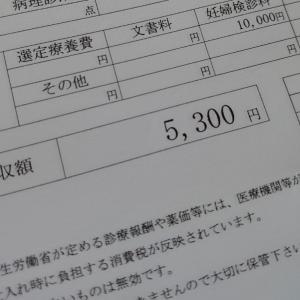 【34週】妊婦検診8回目   〜無痛分娩説明〜バースプラン提出