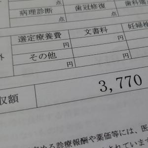 【37週】妊婦健診10回目  ~NSTと内診グリグリ