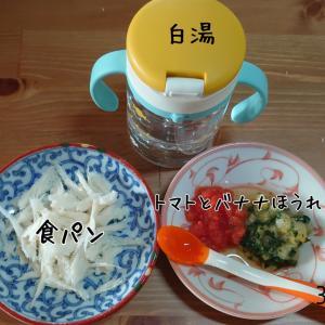 8m14d      /愛知牧場&名古屋名物堪能