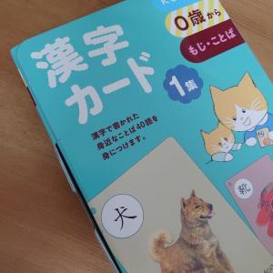 9m0d      /漢字カードの使い方  赤ちゃん編