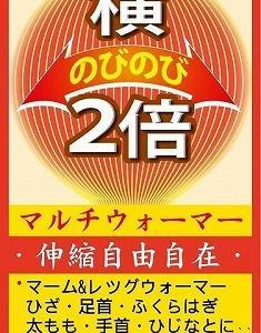台湾で見つけた面白い日本語シリーズ。続編。