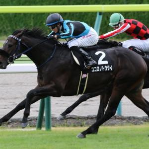 第74回 セントライト記念(GⅡ)全馬追い切りコメント&推奨馬