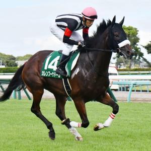 第40回 ジャパンカップ(G1)全馬追い切りコメント&推奨馬