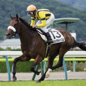 第58回 愛知杯(G3)追い切りコメント&推奨馬