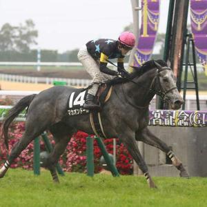 第69回 京都新聞杯(G2)追い切りコメント&推奨馬!