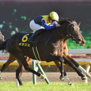 第43回 新潟大賞典(G3)追い切りコメント&推奨馬!