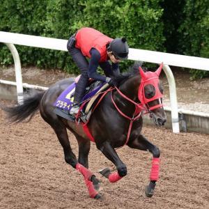 第88回 日本ダービー(G1)追い切りコメント&推奨馬!