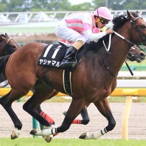 第38回 エプソムC(G3)追い切りコメント&推奨馬