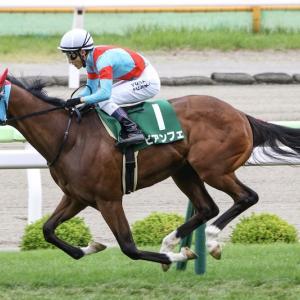 第28回 函館SS(G3)追い切りコメント&推奨馬