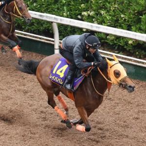 第62回 宝塚記念(G1)追い切りコメント&推奨馬