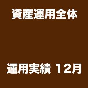 年利27.5% 実現損益爆上がりDEATH!【資産運用全体実績12月】