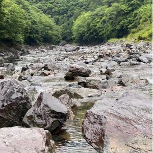 もはや釣り返しの効く川は秘境しか無さそう…( ˙-˙ )