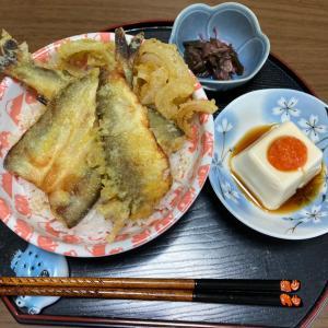 美味いぞ!鮎天丼*\(^o^)/*