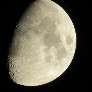 月撮影 9月28日