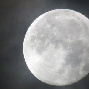 夜明け前の月