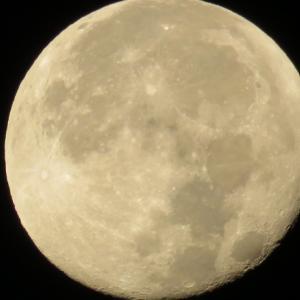中秋の名月の二日後の月