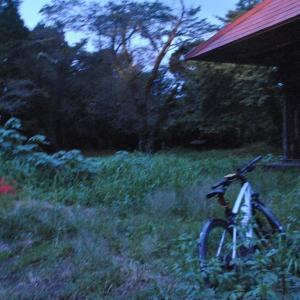 クロスバイクで旌桜寺跡の彼岸花を見に行ってみた