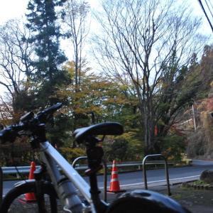 クロスバイクで日立市「玉簾の滝」紅葉を見に行ってみたけど、色付き始めでした