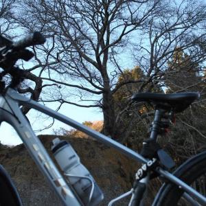 クロスバイクで常陸太田市西河内下町と中町を巡ってみた