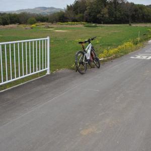 堤防補強工事の一部が完了したっぽい里川沿いをクロスバイクで走り抜けてみた