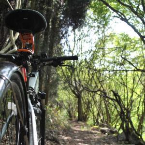 山神にあやかってしまい旺盛なサイクリング その1