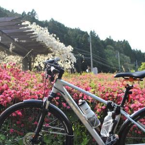 山神にあやかってしまい旺盛なサイクリング その2