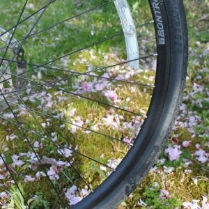 山神にあやかってしまい旺盛なサイクリング その3