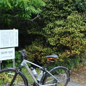 クロスバイクで山道(?)に突入後、のんびりサイクリングしてみた