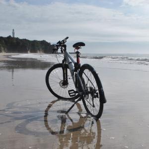 クロスバイクで久慈浜から茂宮川へ