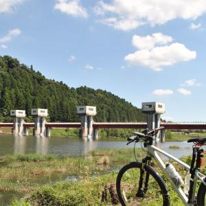 クロスバイクで辰ノ口親水公園や小貫橋へ行ってみた