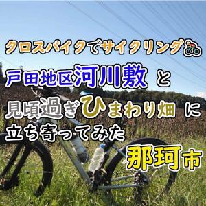 クロスバイクで那珂市の終焉極まるひまわり畑に立ち寄ってみた