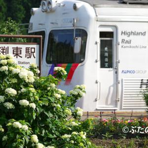 【アルピコ交通上高地線】3000形3007+3008 渕東駅の紫陽花