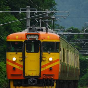 【しなの鉄道】115系S11編成 亜熱帯