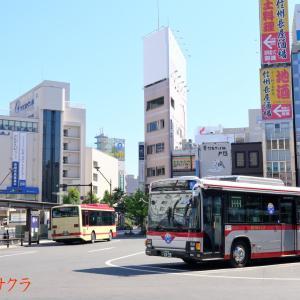 【長電バス】1839号車 長野東京線運行開始60周年記念(6)