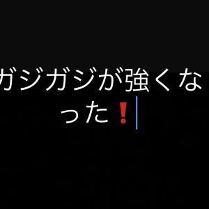 mix犬のあめちゃん!!ガジガジすこし噛む力が強くなった!!