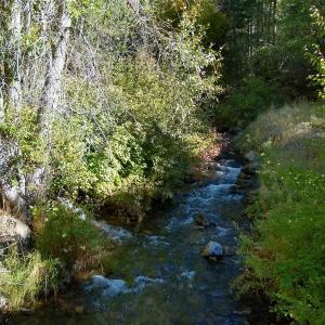 日常:Millcreek Canyonへハイキング