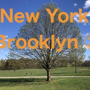 【ブルックリン】プロスペクトパークとウィリアムズバーグについて