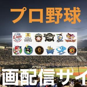 【2020年】プロ野球中継が見れるネット動画配信サービスおすすめ6選