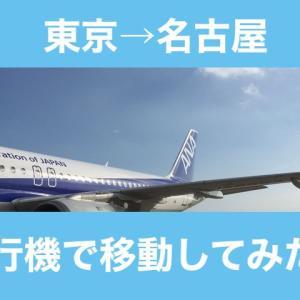 【東京〜名古屋間の移動】飛行機に乗ってみた!移動の料金比較など