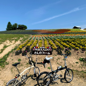 DAHON routeで富良野サイクリング