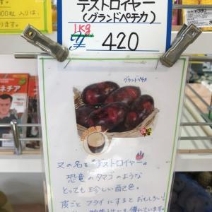 種芋の購入