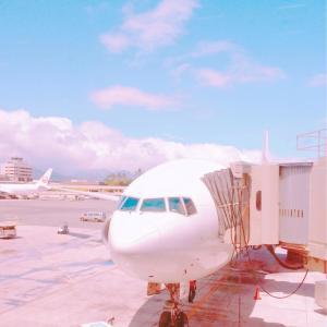 空港ターミナルに引き返す悪夢にうなされ、プレッシャーを再認識した初夢でした!