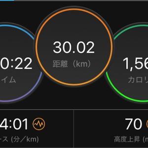 7/15 30kmペース走