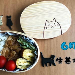 猫のわっぱ弁当ブログ59(生姜焼き弁当)