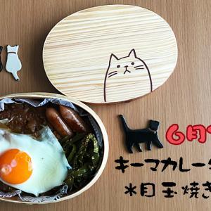 猫のわっぱ弁当ブログ61(キーマカレー弁当◦目玉焼きのせ)