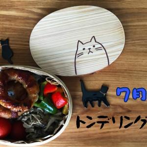 猫のわっぱ弁当ブログ69(トンデリング弁当)