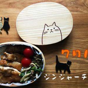 猫のわっぱ弁当ブログ74(ジンジャーチキン弁当)